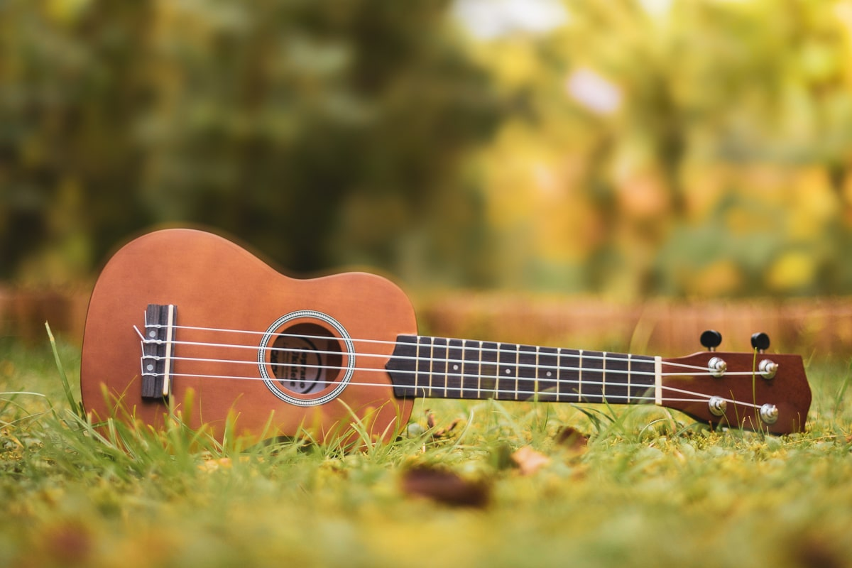 brown soprano ukulele on grass outside