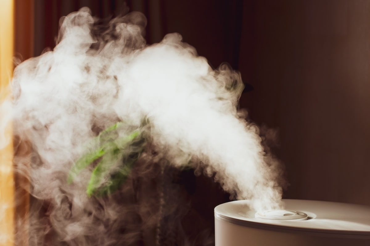 small humidifier letting off steam into room